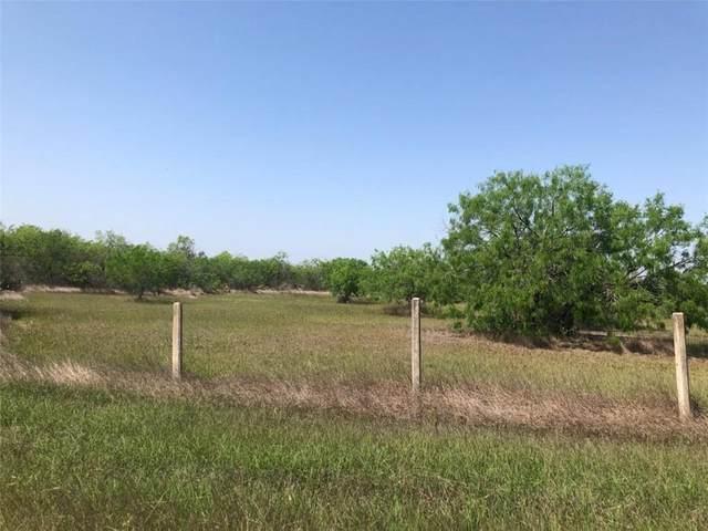 181 County Road 3034, Orange Grove, TX 78372 (MLS #381898) :: South Coast Real Estate, LLC