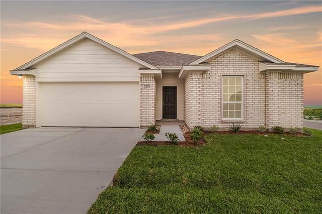 2926 Everly Lane, Corpus Christi, TX 78415 (MLS #382036) :: South Coast Real Estate, LLC