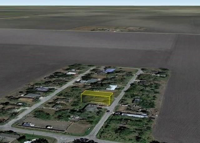 Bishop, TX 78343 :: KM Premier Real Estate