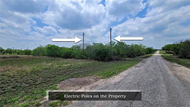 00 County Road 242, Orange Grove, TX 78372 (MLS #383472) :: KM Premier Real Estate