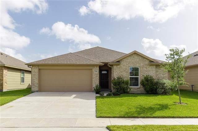 7746 Corral Drive, Corpus Christi, TX 78414 (MLS #386401) :: RE/MAX Elite | The KB Team