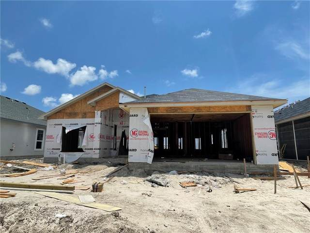 4102 Azali Drive, Corpus Christi, TX 78414 (MLS #386558) :: South Coast Real Estate, LLC