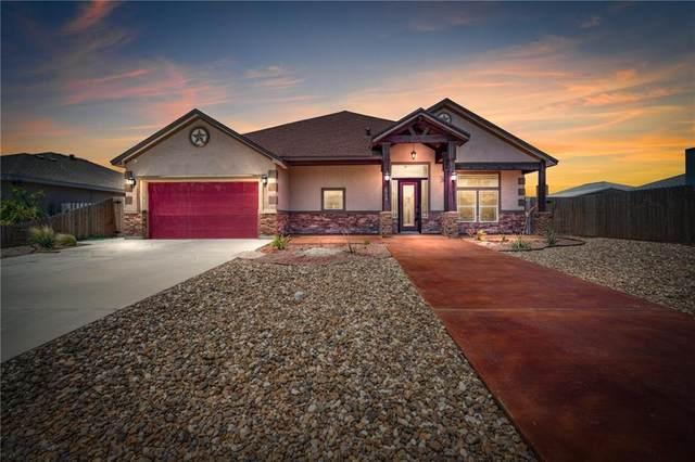 14214 Jackfish Avenue, Corpus Christi, TX 78418 (MLS #387160) :: South Coast Real Estate, LLC