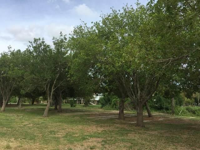 17701 S State Highway 35 S, Tivoli, TX 77990 (MLS #387894) :: KM Premier Real Estate