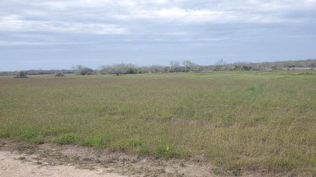 00 T-Head Lot 2 Drive, Riviera, TX 78379 (MLS #388149) :: KM Premier Real Estate