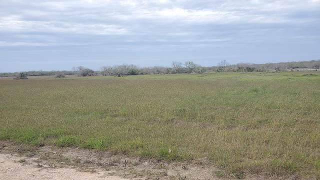00 T-Head Lot 6 Drive, Riviera, TX 78379 (MLS #388152) :: KM Premier Real Estate