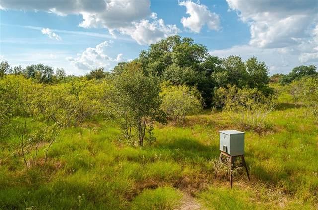 Gonzales, TX 78629 :: KM Premier Real Estate