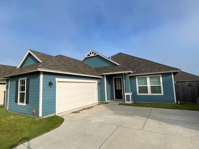 132 Shadow Moss Lane, Rockport, TX 78382 (MLS #390005) :: RE/MAX Elite Corpus Christi