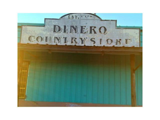 1525 Cr 534, Dinero, TX 78350 (MLS #238994) :: RE/MAX Elite Corpus Christi