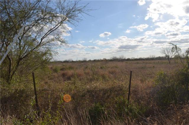 157 County Road 308 & County Road, Orange Grove, TX 78372 (MLS #323333) :: RE/MAX Elite Corpus Christi