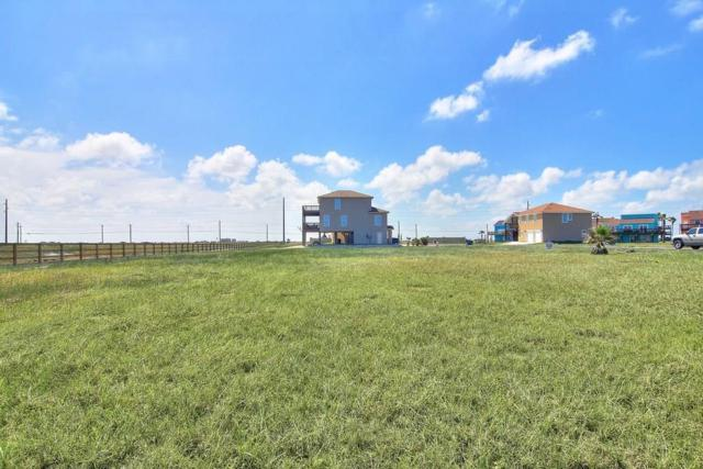 129 Beach View Dr, Corpus Christi, TX 78373 (MLS #330235) :: Desi Laurel Real Estate Group