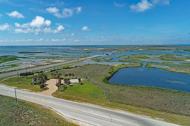 14801 State Hwy 361, Corpus Christi, TX 78418 (MLS #335534) :: Desi Laurel Real Estate Group