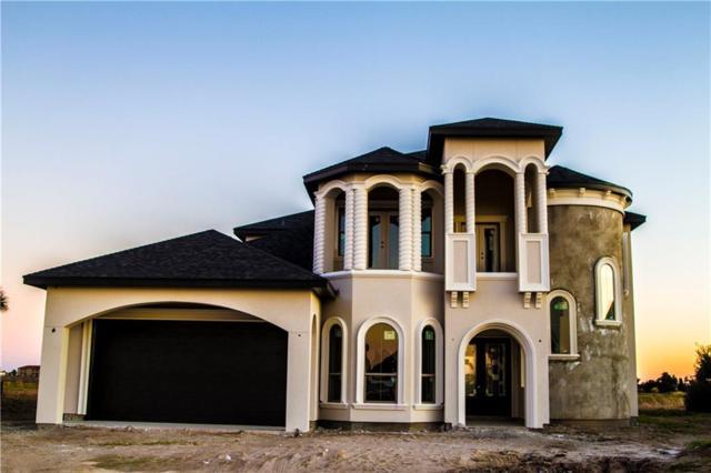 14953 Canadian Mist Dr, Corpus Christi, TX 78418 (MLS #338117) :: Desi Laurel Real Estate Group