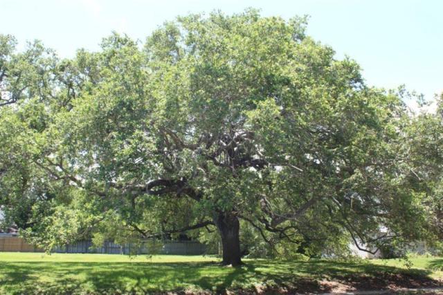 221 Oleander Avenue, Corpus Christi, TX 78404 (MLS #338815) :: South Coast Real Estate, LLC