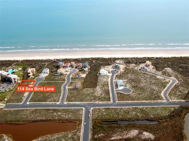114 Sea Bird Lane, Port Aransas, TX 78373 (MLS #339527) :: Desi Laurel Real Estate Group