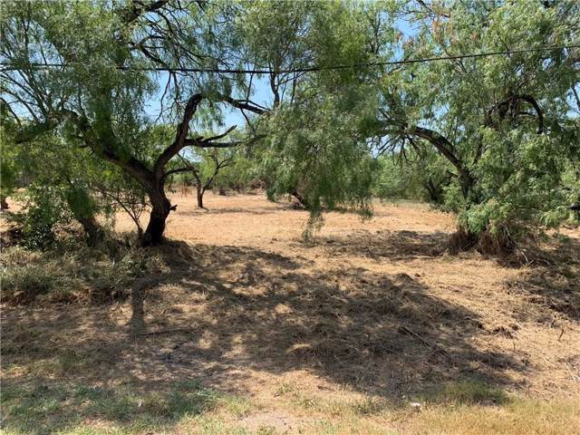 0 Guadalupe- .34 Acre Lot Street, Alice, TX 78332 (MLS #344677) :: South Coast Real Estate, LLC