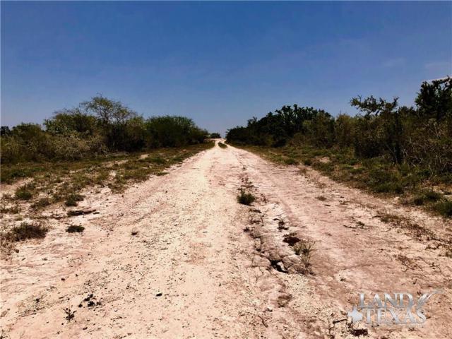 0 Hwy 59- Tract 3- 26.09 Acres, Freer, TX 78357 (MLS #347488) :: Desi Laurel Real Estate Group