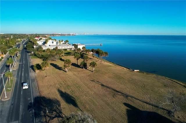 4240 Ocean Drive, Corpus Christi, TX 78411 (MLS #352638) :: Desi Laurel Real Estate Group