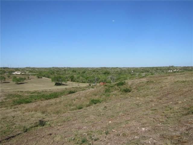 408 Lake Country Drive, Mathis, TX 78368 (MLS #361134) :: KM Premier Real Estate