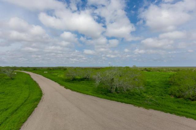 6 E Santa Cruz Lane N, Corpus Christi, TX 78415 (MLS #243663) :: South Coast Real Estate, LLC