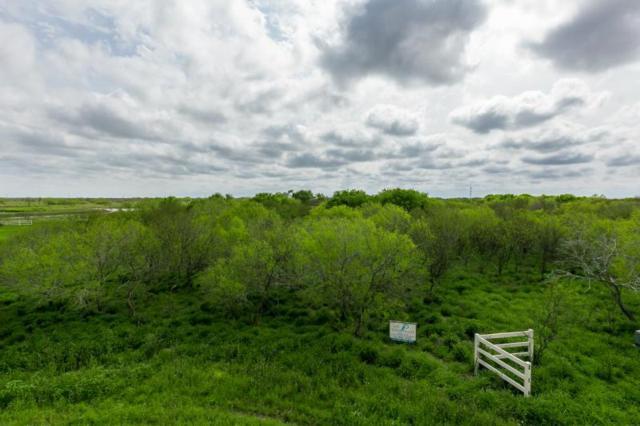 12 E Santa Cruz Lane N, Corpus Christi, TX 78415 (MLS #243703) :: South Coast Real Estate, LLC
