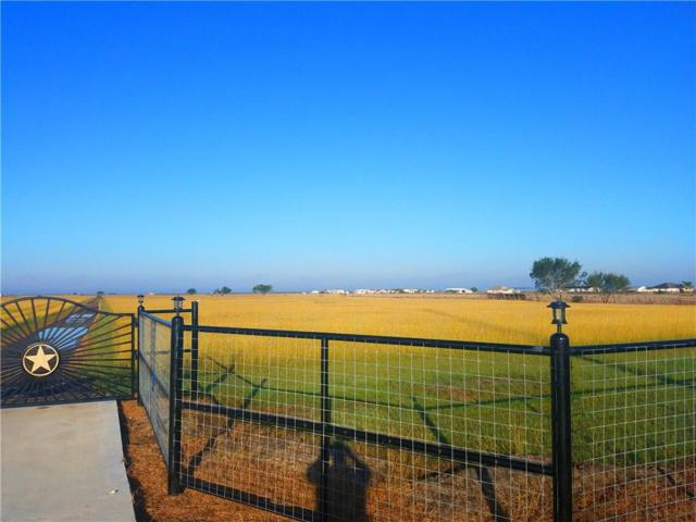 5089 County Road 81, Robstown, TX 78380 (MLS #320590) :: Better Homes and Gardens Real Estate Bradfield Properties