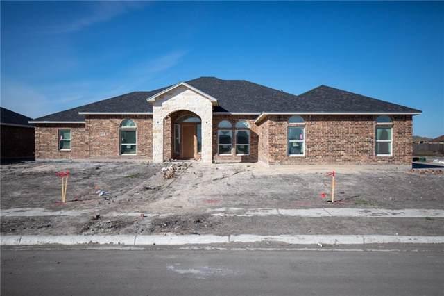 2541 Pacific View St, Corpus Christi, TX 78415 (MLS #353547) :: Desi Laurel Real Estate Group