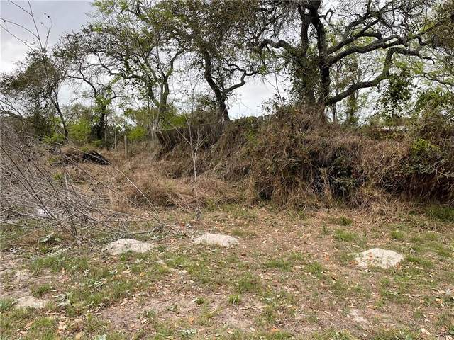 1801 Dove Ln, Corpus Christi, TX 78418 (MLS #358294) :: KM Premier Real Estate