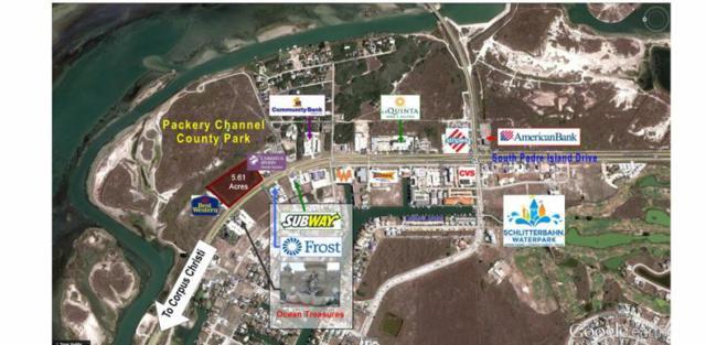 14118 S Padre island Drive, Corpus Christi, TX 78418 (MLS #59090) :: Better Homes and Gardens Real Estate Bradfield Properties