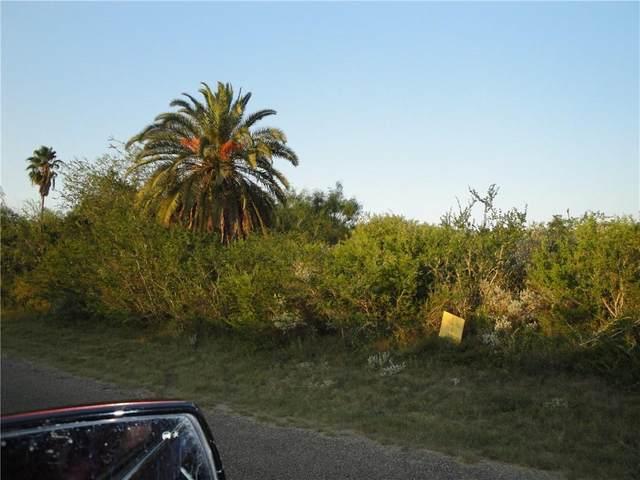6 Carmel Drive, Sandia, TX 78383 (MLS #87930) :: South Coast Real Estate, LLC