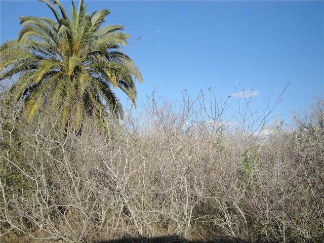 13 Carmel Drive, Sandia, TX 78383 (MLS #88067) :: KM Premier Real Estate