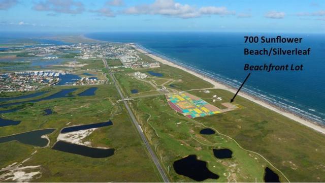 700 Sunflower Beach/Silverleaf, Port Aransas, TX 78373 (MLS #245855) :: RE/MAX Elite Corpus Christi