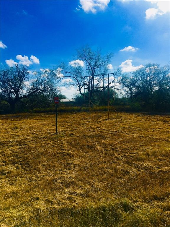2825 Hwy 281, Other, TX 78008 (MLS #321066) :: Better Homes and Gardens Real Estate Bradfield Properties