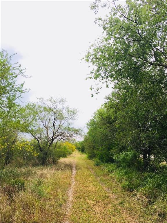 0 County Road 440- 23.5 Acres, Alice, TX 78332 (MLS #327917) :: Kristen Gilstrap Team
