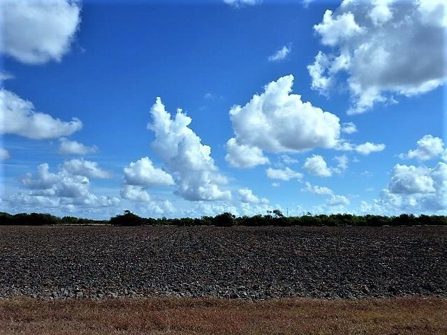 0000 Buddy Ganem (Fm 3239) 8.698 Acres - Photo 1