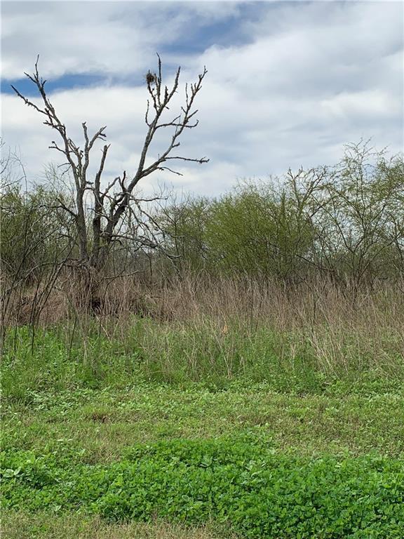 0000 County Road 73, Robstown, TX 78380 (MLS #340212) :: Desi Laurel & Associates