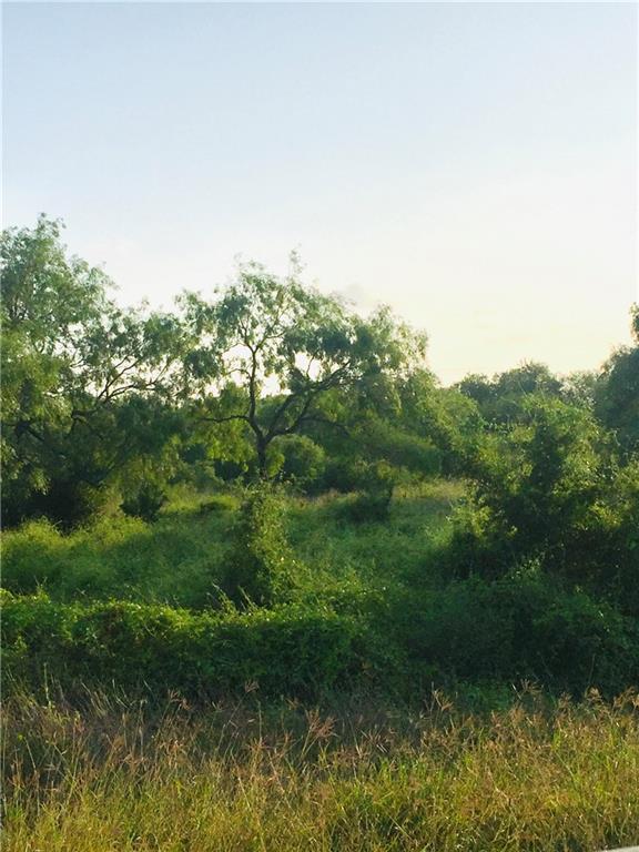 24 Deer Meadows- Lot 24- 3.59 Acres - Photo 1