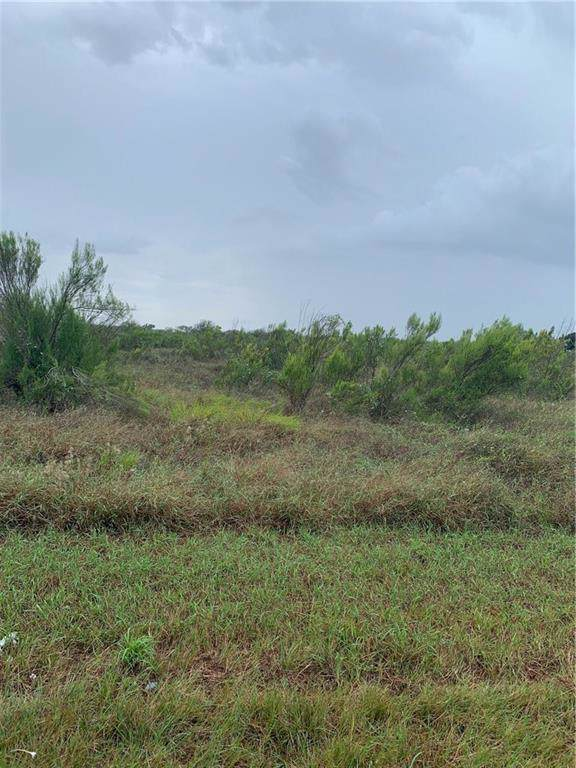 0 E County Road 303, Orange Grove, TX 78372 (MLS #349779) :: Desi Laurel Real Estate Group