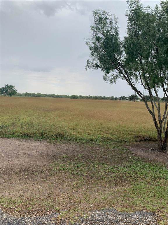 0 E County Road 303, Orange Grove, TX 78372 (MLS #349914) :: Desi Laurel Real Estate Group