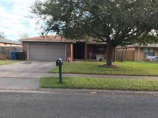 10533 Pioneer, Corpus Christi, TX 78410 (MLS #351049) :: Desi Laurel Real Estate Group