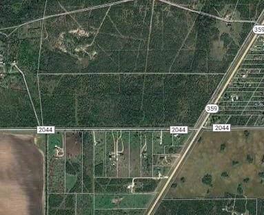 0 W Fm 2044, Alice, TX 78332 (MLS #353742) :: Desi Laurel Real Estate Group