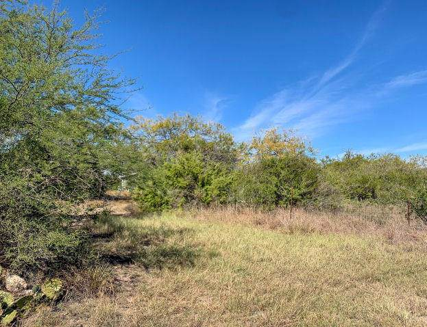 1402 Stephens Drive, George West, TX 78022 (MLS #354001) :: RE/MAX Elite Corpus Christi