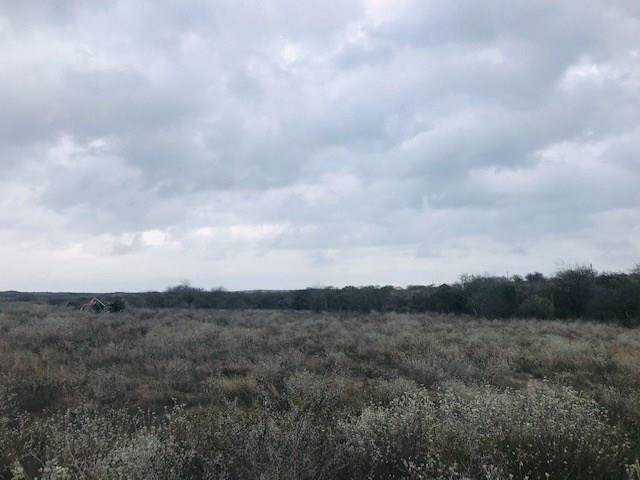 0 W Cr 303, Orange Grove, TX 78372 (MLS #354752) :: Desi Laurel Real Estate Group