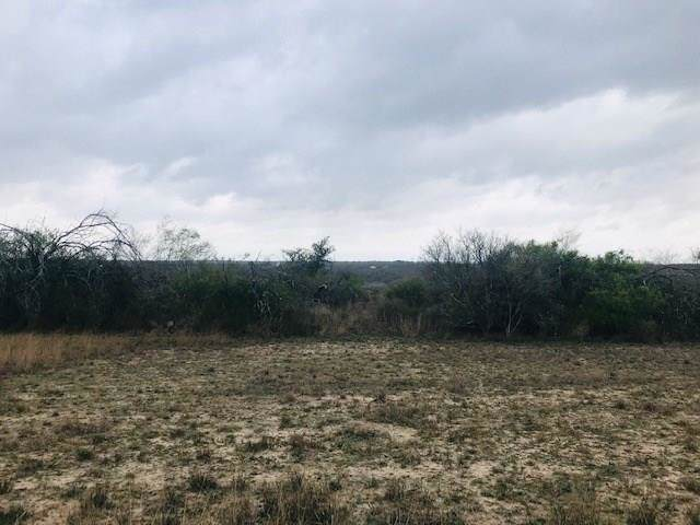 0 N Private Rd Off W Cr 303, Orange Grove, TX 78372 (MLS #354756) :: Desi Laurel Real Estate Group