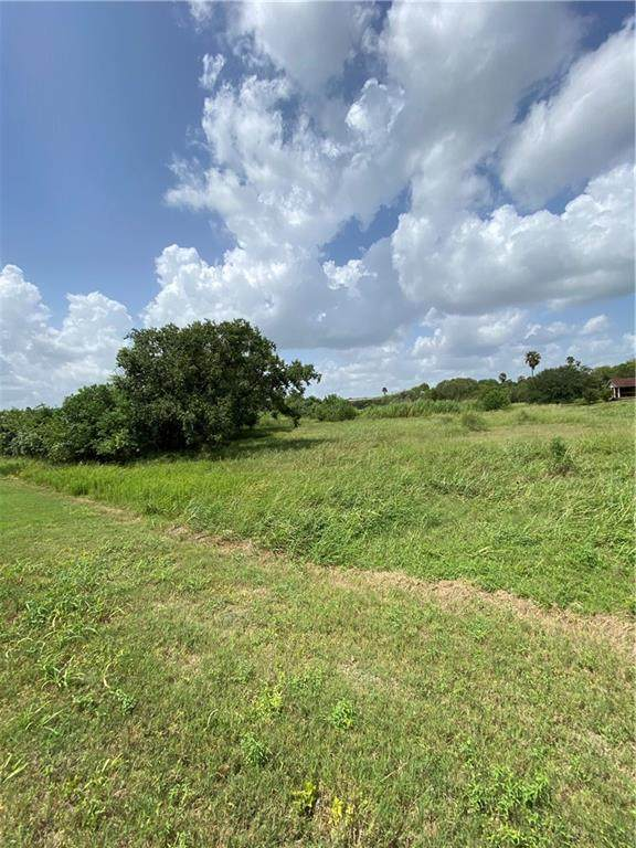 331 Lakeshore Drive, Sandia, TX 78383 (MLS #366764) :: Desi Laurel Real Estate Group