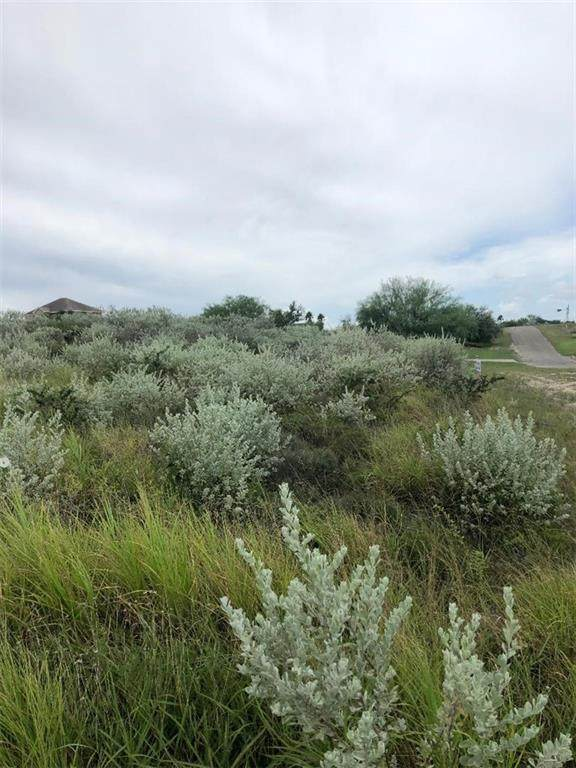 Sandia, TX 78383 :: Desi Laurel Real Estate Group