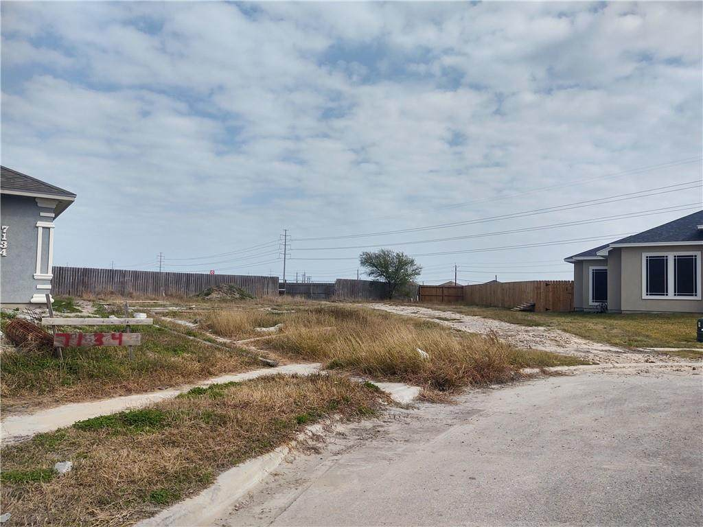 7138 Cotton Club Drive - Photo 1