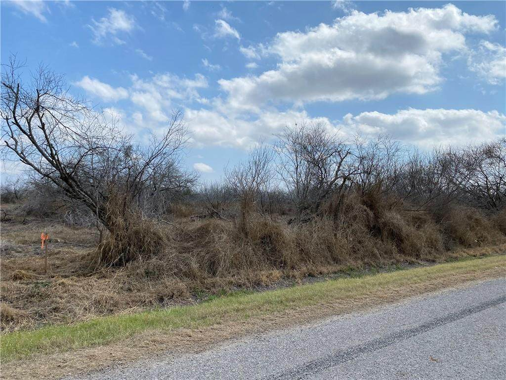 Tract 2 County Road 2431 - Photo 1