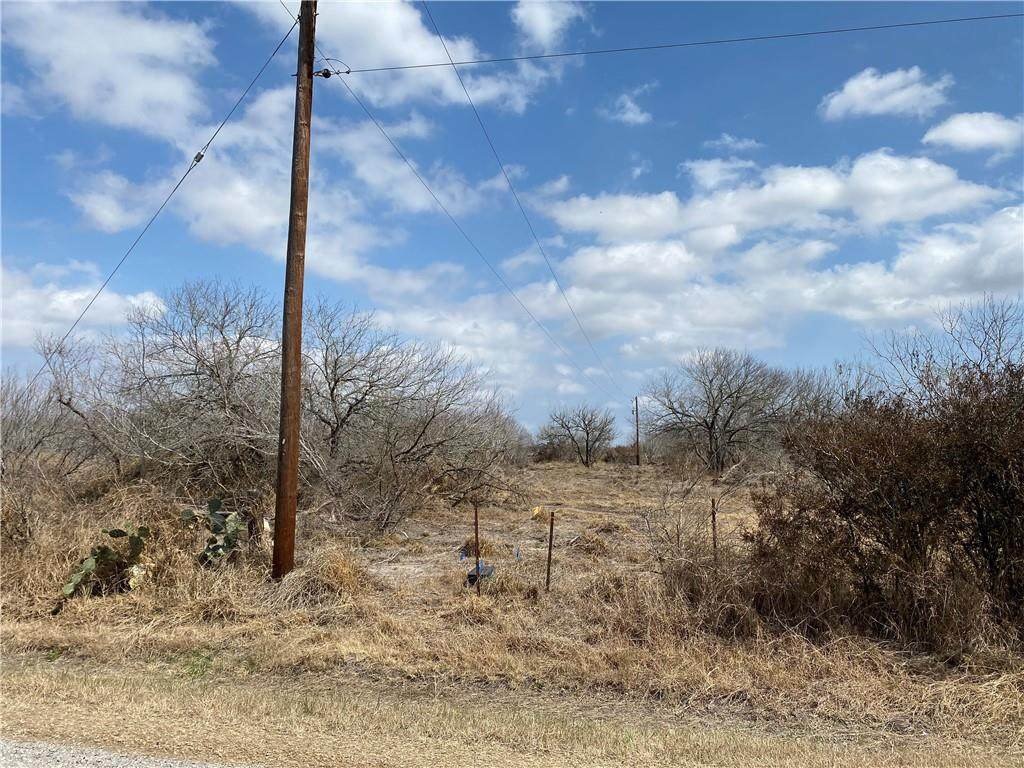 Tract 4 County Road 2431 - Photo 1