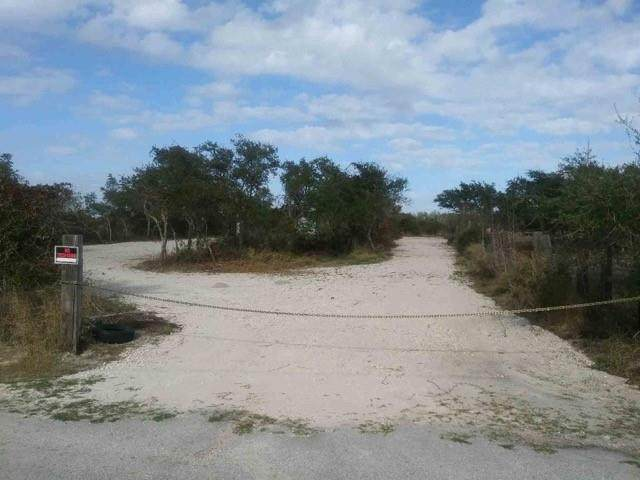 704 W Gile Avenue, Aransas Pass, TX 78336 (MLS #380798) :: RE/MAX Elite Corpus Christi